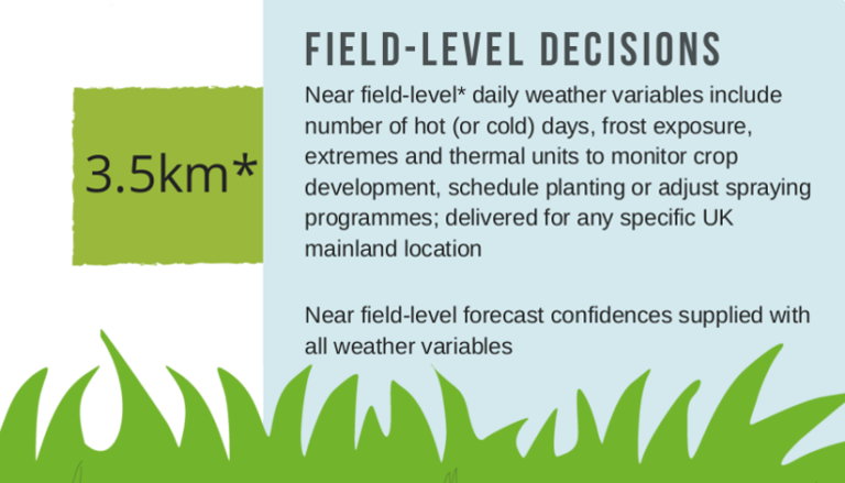 Field-level grower decisions